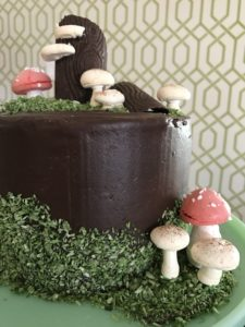 Edible Coconut Moss Woodland Cake Meringue Mushrooms Faux Bois Chocolate